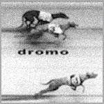 DROMO – I edizione